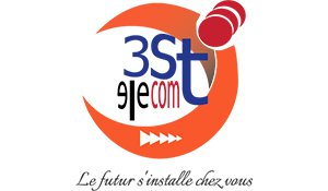 3STELECOMSECURITY logo
