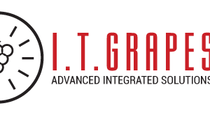 I.T.GRAPES logo