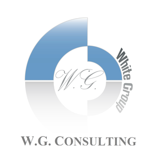 WG CONSULTING logo