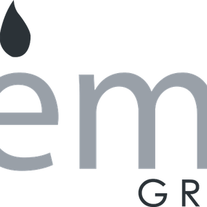 EMC GROUP logo