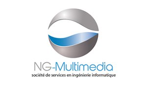 NG-MULTIMEDIA logo