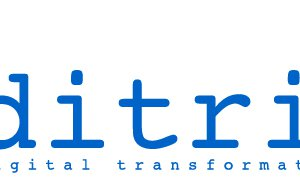 DITRIOT CONSULTING logo
