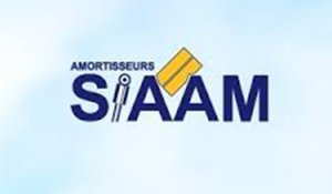 SIAAM logo
