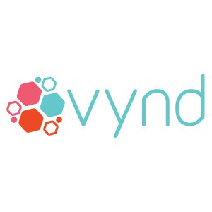 VYND SOLUTIONS  logo