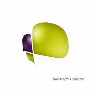 SMART BUSINESS CONSULTING logo