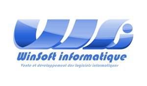 WinSoft Informatique logo